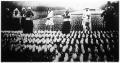 Hollandiának legnagyobb exportcikke a jácint