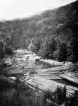 Tutaj-torlódás a Felső-Tiszán