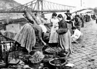 Nagykőrösi gyümölcsárusok Budapesten