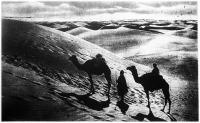 Az egyiptomi sivatagban