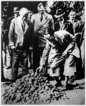 Lloyd George bemutatja vendégeinek burgonyatermésének egy részét.