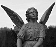 A zidevicei angyal nem áldást hozott