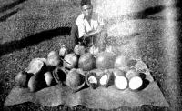Jávai kókuszdióárus