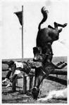 Petneházy Imre az 1932-es olimpián