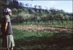A fotós felesége a kerti tennivalókat veszi számba