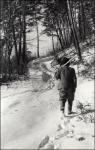 A fotós szomszédja útban a téli erdő felé